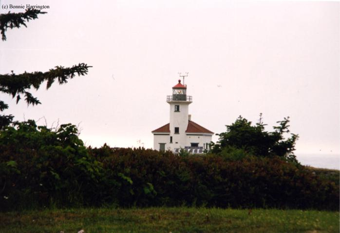 Photo of the Cape Arago Lighthouse.