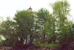 The lighthouse shines its beacon over the trees.