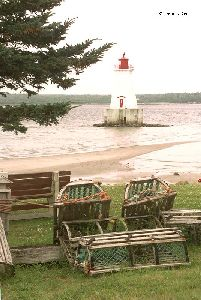 The Sandy Point Lighthouse with tree and traps.